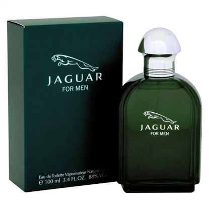 Picture of Jaguar Perfume For Men 100ml