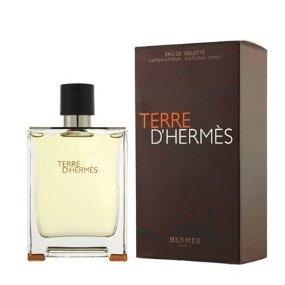 Picture of Terre D'Hermes  Perfume for Men - 100ml