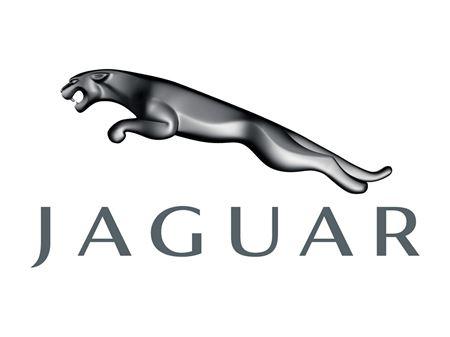 Picture for category Jaguar Brands