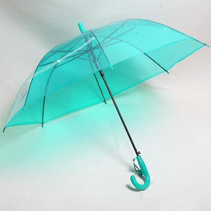 Picture of Transparent Umbrella Blue