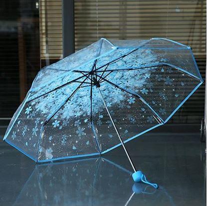 Picture of Korean Transparent Umbrella Blue