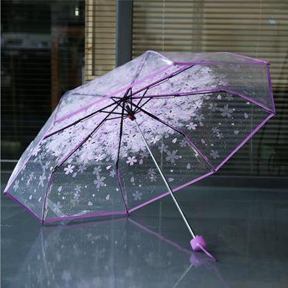 Picture of Korean Transparent Umbrella Gear