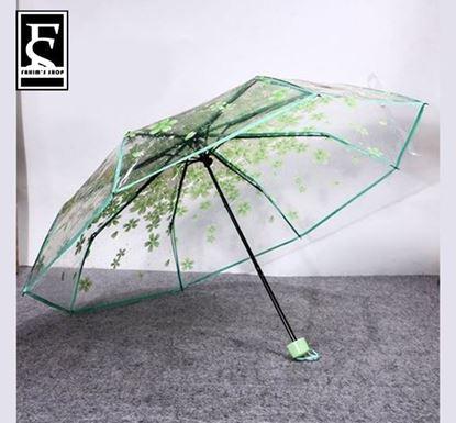 Picture of Korean Transparent Umbrella Green