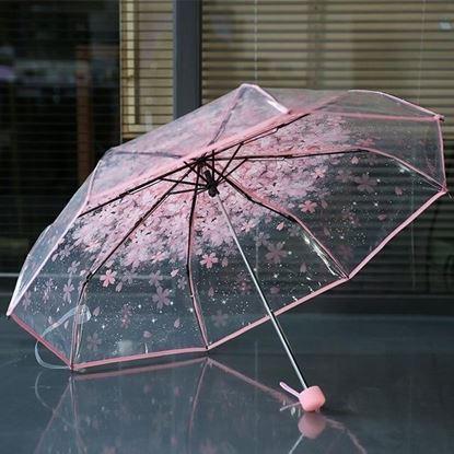 Picture of Korean Transparent Umbrella - Pink