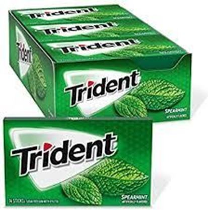 Picture of Trident Spearmint Flavor  168 gm